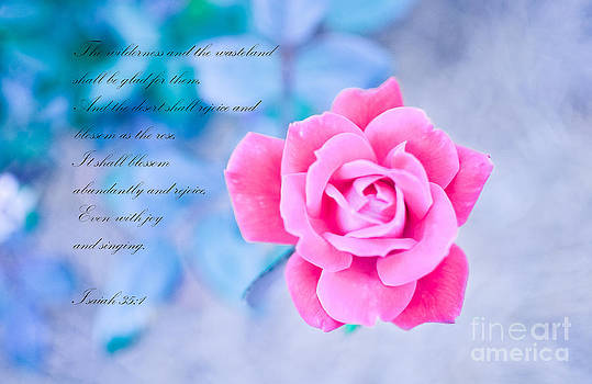 As The Rose  by Reflections by Brynne