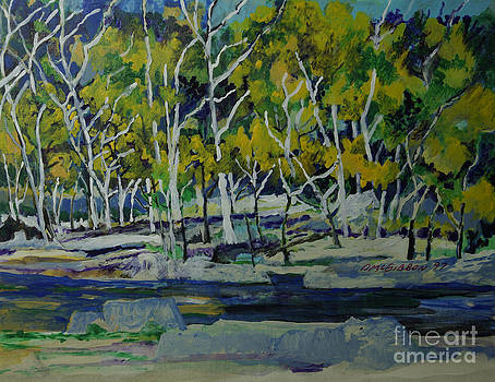 Aspens In Oak Creek Canyon by Donald McGibbon