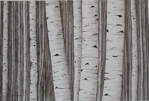 Aspens No. 1 by Laurel Thomson