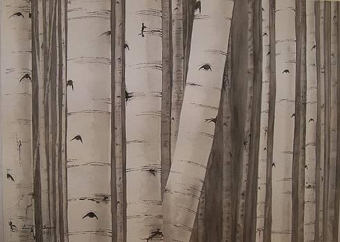 Aspens No. 2 by Laurel Thomson