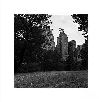 At Central Park by Jose Luis Durante