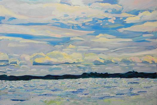 At the One Thousand Islands On Canada by Otilia Gruneantu Scriuba