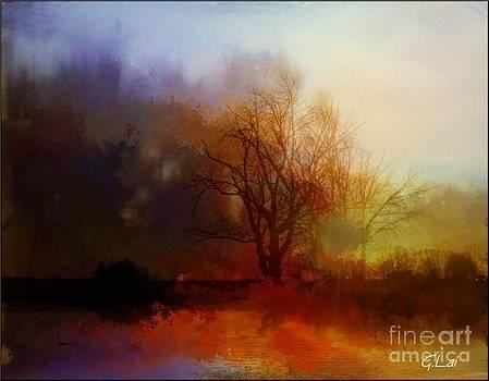 Autumn Color by George Lai