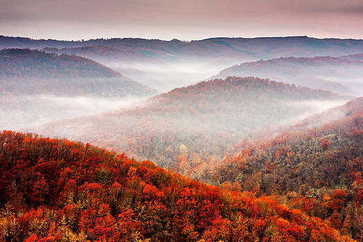 Autumn Fogs by Evgeni Dinev