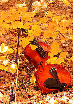 Autumn Harmony by Val Armstrong