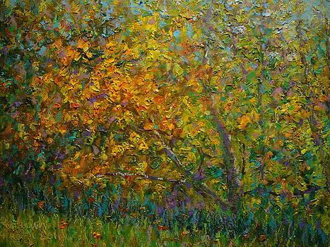 Terry Perham - Autumn Impasto