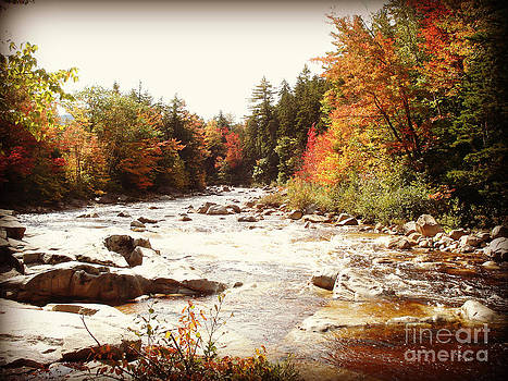 Autumn In New Hampshire by Crystal Joy Photography