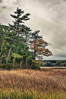 Autumn in NH by Edward Myers
