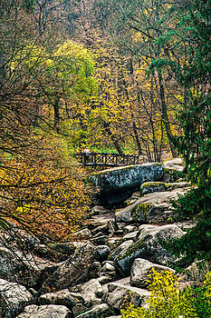 Matt Create - Autumn in Uman