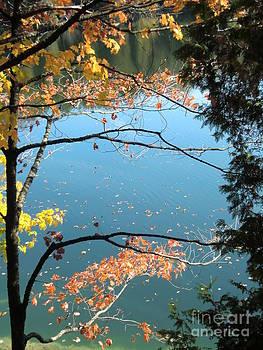 Autumn Lyrics 1 by Nina Nabokova