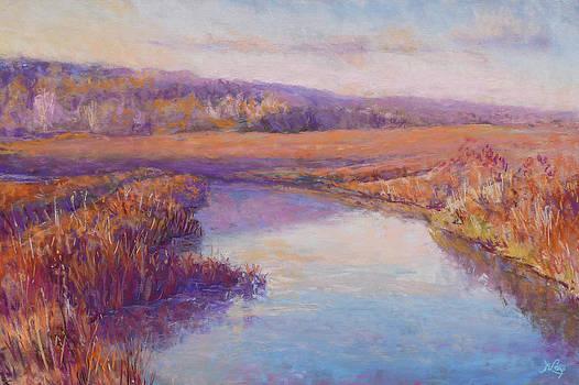 Autumn Marshland by Michael Camp