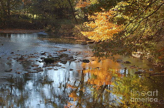 Autumn on the Black Fork River by Bill Dinkins