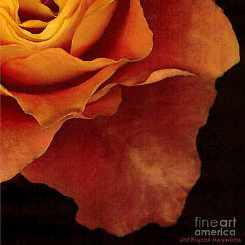 Autumn Rose 1 by Brigetta  Margarietta