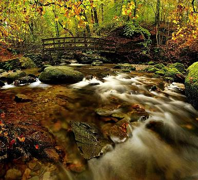 Autumn Stockghyll by Stewart Smith