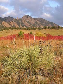 Autumn sunrise along the Mesa Trail by John Myers