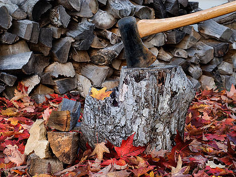 Tom Biegalski - Autumn Wood Chopping