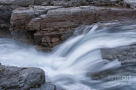 Sandra Bronstein - Avalanche Creek - Glacier National Park