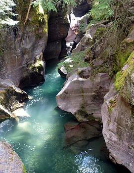 Marty Koch - Avalanche Creek Glacier National Park