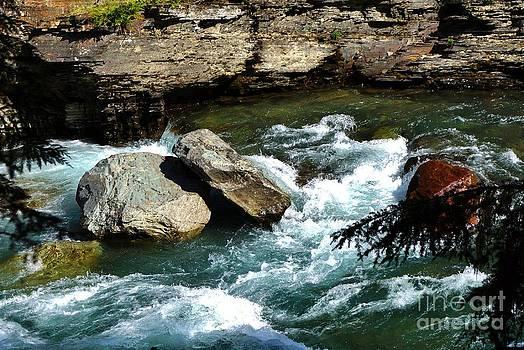 Avalanche Creek by Wendy Emel