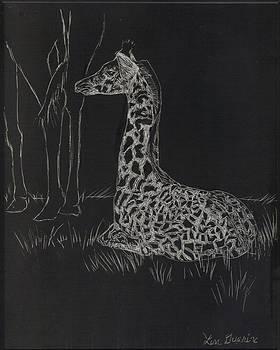 Baby Giraffe by Lisa Guarino