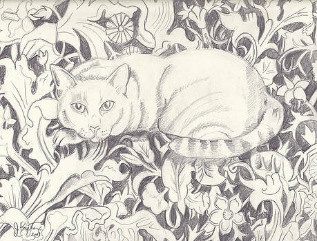Bailey The Cat by John Keaton