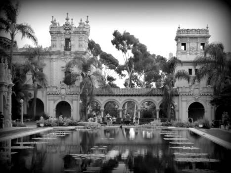 Karyn Robinson - Balboa Park Pond