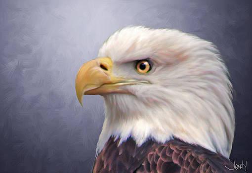 Bald Eagle by Jennifer Hickey