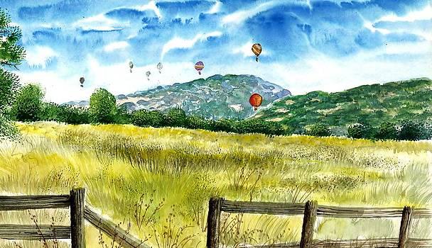 Balloon Race by Steven W Schultz