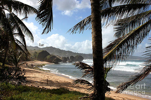 Barbados - Bathsheba by Barbara Marcus