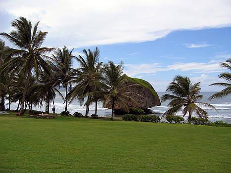 Gilbert Artiaga - Barbados