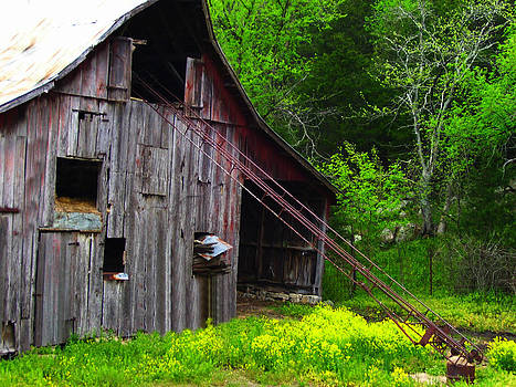 Barn in Rural Missouri by Patricia Erwin