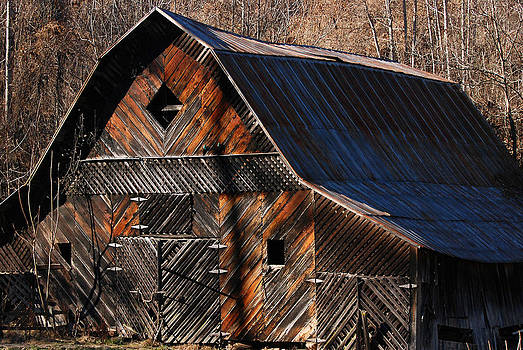 Barn Mosaic by Cecile Brion