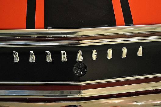 Daryl Macintyre - Barracuda
