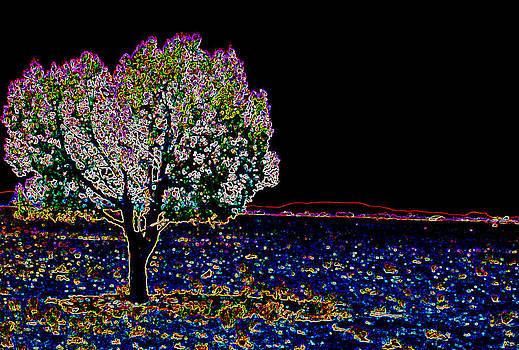 Barren Tree by Charles Benavidez