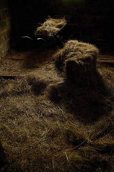 Barrow and Hay by Miguel Capelo