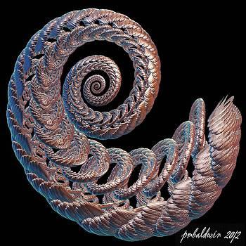 Bashful Curl by Patrice Baldwin