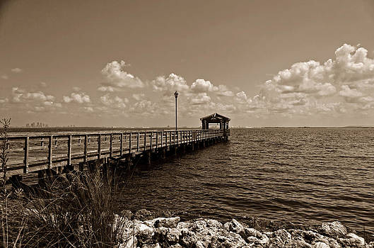 Bayside Pier by Lawrence Ott
