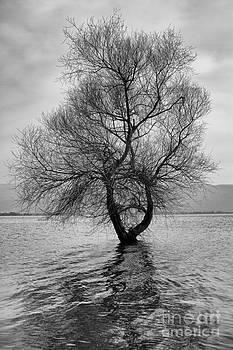 Be Alone  by Zafer GUDER
