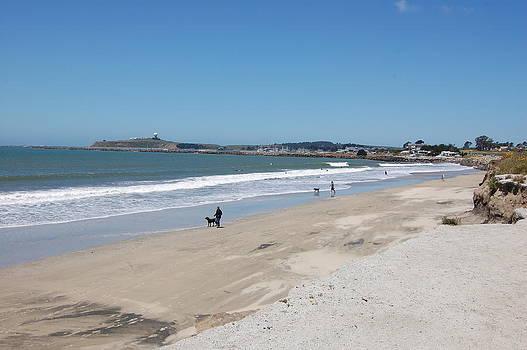 Beach at El Granada by Carolyn Donnell