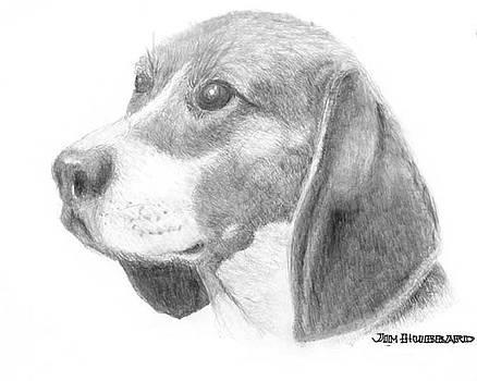 Jim Hubbard - Beagle Digitally Enhanced