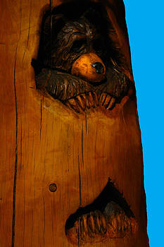 LeeAnn McLaneGoetz McLaneGoetzStudioLLCcom - Bear in Log