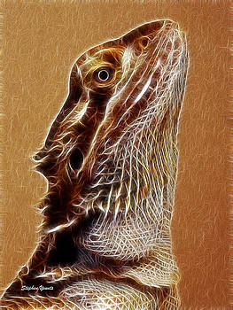 Bearded Dragon by Stephen Younts