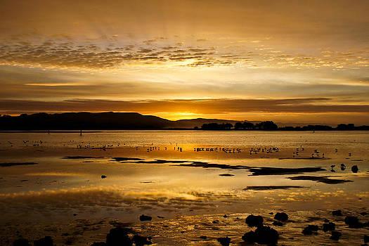 Beautiful Bodega Bay 2 by Jake Johnson