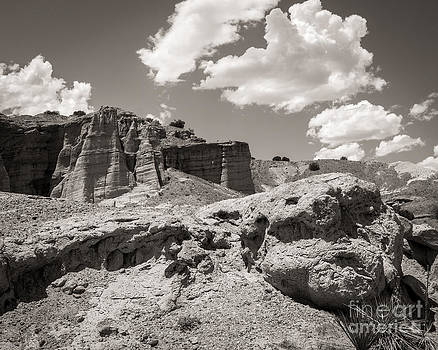Beautiful New Mexico by Sherry Davis