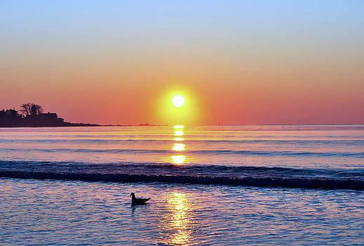 Beautiful Sunrise by Lisa  Esposito