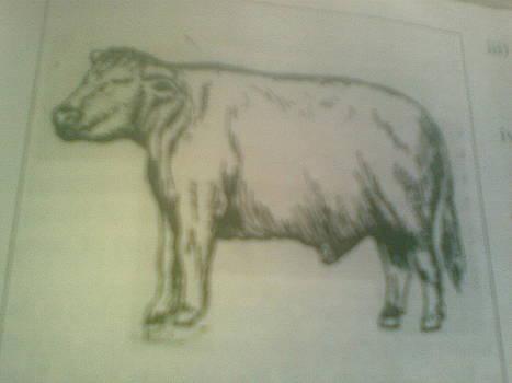 Beef by OKORO  Judith
