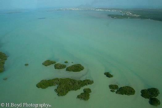 Belizean Streaks by Heather  Boyd
