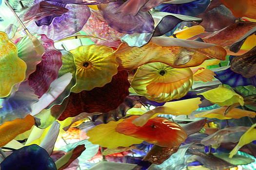 Bellagio Glass by Jay Warwick
