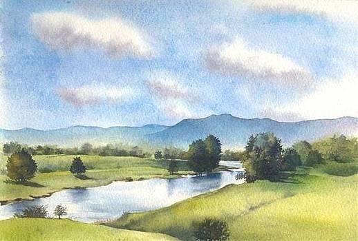 Bellinger River in Spring by Sandra Phryce-Jones
