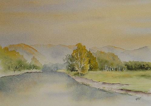 Bellinger valley by Carol McLagan